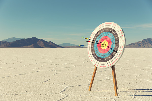 A target with several arrows in the bullseye stands on the Bonneville Salt Flats. The business has found success and it mark for the future.